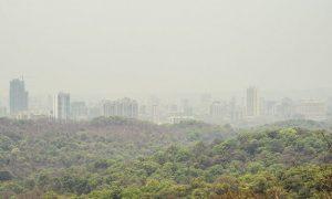 Mumbai: Sanjay Gandhi National Park