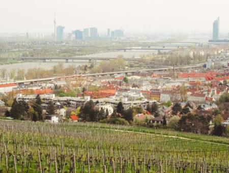 Nussberg bei Wien