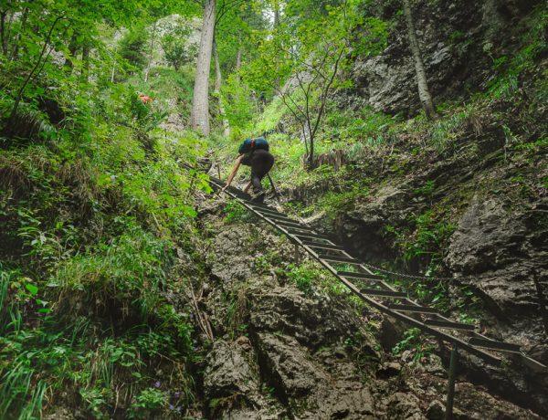 Hike: Zejmarská roklina in Slovak Paradise NP