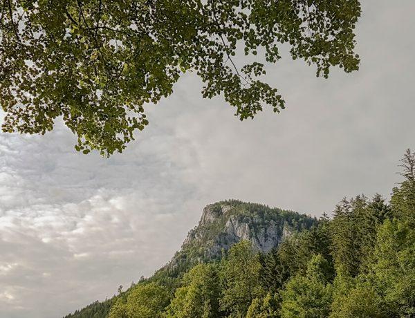 Falkenstein 1.011 m / Naturepark Falkenstein-Schwarzau [Hike]