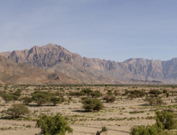 Wadi Mistral