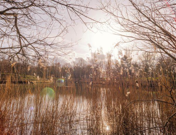 Forêt domaniale de Meudon – GR2 / GR22 [HIKE]