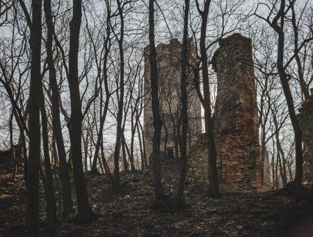 Burgruine Pottenburg & Königswarte 344m