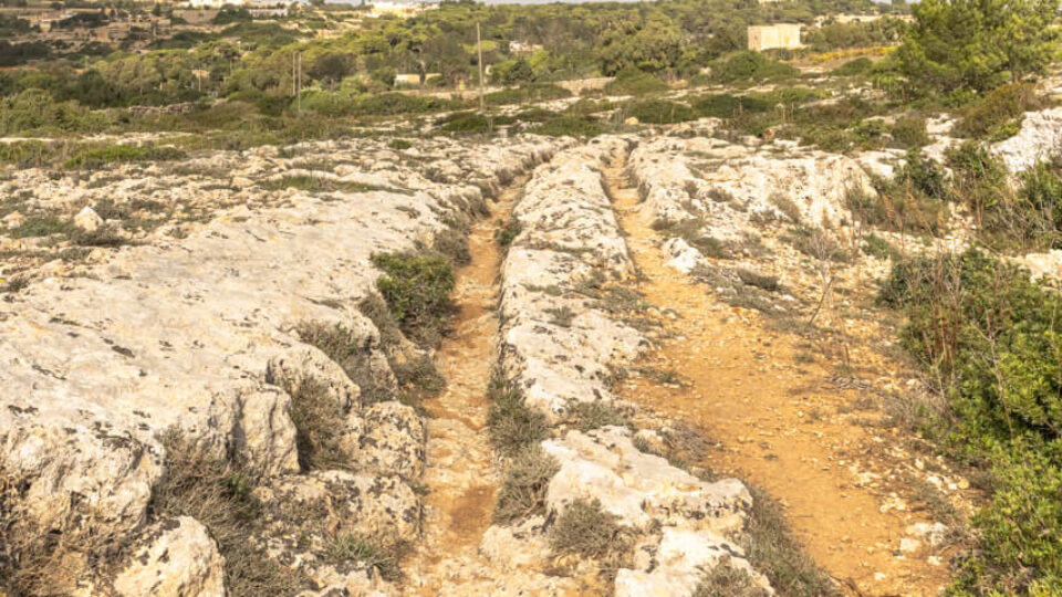 On The Trail Of The Giants: Clapham Junction Cart Ruts