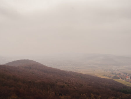 Buchberg 469 m